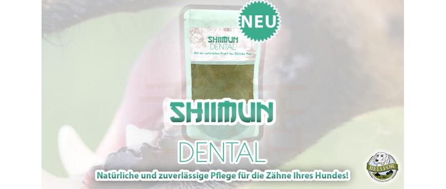 Shiimun Dental